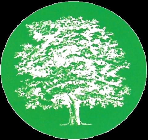 Baumpflege Buenstorf